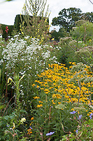 Summer border at Great Dixter