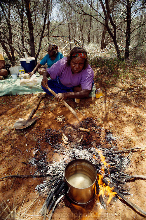 aboriginal cooking methods aboriginal dreaming aboriginals Aboriginal people, bush foods knowledge and products from dreaming a 'package approach' to ethical research methods.