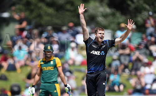 24.10.2014. Mount Manganui, New Zealand. ANZ One Day International Cricket New Zealand versus South Africa. James Neesham appeals successfully for a catch by Ronchi to dismiss Faf du Plessis.