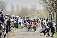 peloton over the Paddestraat cobbles<br /> <br /> 101th Ronde Van Vlaanderen 2017 (1.UWT)<br /> 1day race: Antwerp &rsaquo; Oudenaarde - BEL (260km)