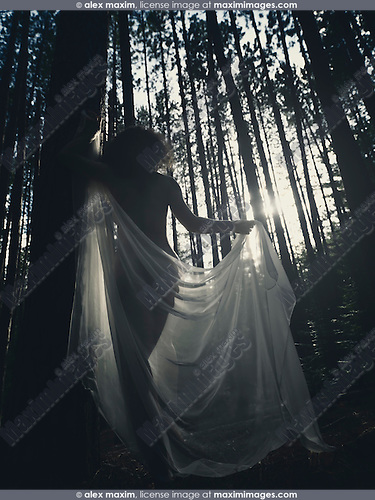 Shadowy artistic nude photo of a silhouette of a woman in soft dreamy sunlight walking throught a pine forest with a white translucent shawl