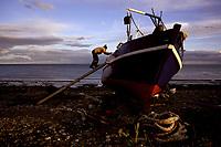 6. Overfishing