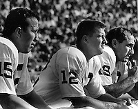 Oakland Raider quarterbacks, Tom Flores, Charlie Green, and Cotton Davidson ( 1966 photo/Ron Riesterer)
