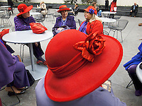 USA. New York City. A group of elderly women, all wearing a red hat and a purple jacket, seat on a square in Midtown Manhattan ( 43rd Street / 6Avenue). 26.10.2011 &copy; 2011 Didier Ruef