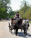 Coach Colonial Williamsburg Virginia, Williamsburg Virginia 1699 to 1780 capital Commonwealth of Virginia molding democracy for the United States of America.  Williamsburg was the center of government, education and culture in the Colony of Virginia, george Washington, Thomas Jefferson, Patrick Henry, James Monroe, Hames Madison, George Wythe, Peyton Randolph and others molded democracy for the United States,