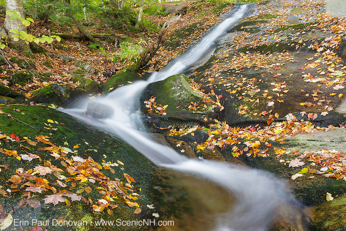 Cascade along Clough Mine Brook, a tributary of Lost River, in Kinsman Notch of Woodstock, New Hampshire during the autumn months.