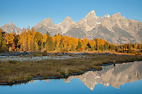 The Cathedral Group during autumn in Grand Teton National Park