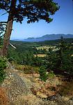 On hike up mountain near Olga
