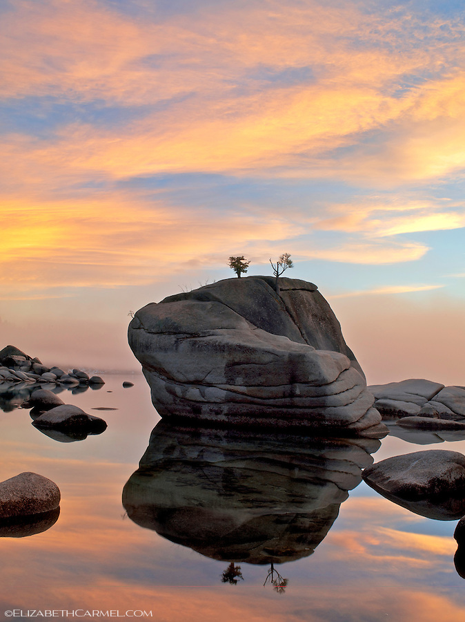 Bonsai Rock Reflections