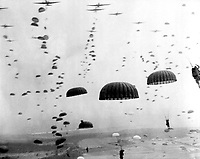 Parachutes open overhead as waves of paratroops land in Holland during operations by the 1st Allied Airborne Army. September 1944. (Army)<br /> Exact Date Shot Unknown<br /> NARA FILE #:  111-SC-354702<br /> WAR &amp; CONFLICT BOOK #:  1066
