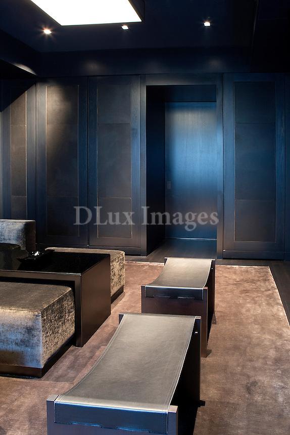 Modern dark living room