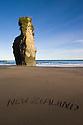 """NEW ZEALAND"" written on sand at beach; sea stack in background; North Taranaki Bight; dawn; North Island, New Zealand"
