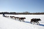 Photographs of John Baker's 2011 Iditarod run. Yukon River outside of Anvik. Stephen Nowers/Alaska Dispatch