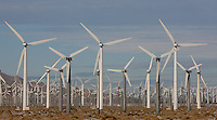 Wind turbines generating electricity on the San Gorgonio Pass Wind Farm serving Palm Springs, California