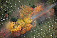 fall colors, cemetery, trees