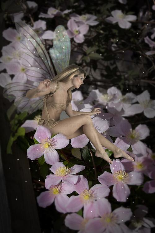 Fairy amongst flowers