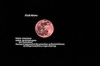 "Farmer's Almanac says Native Americans named  April's full moon  the Pink Moon for ""the herb moss pink, or wild ground phlox, which is one of the earliest widespread flowers of the spring."""
