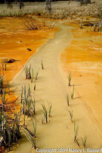 Water flowing through Ochre Beds at Painted Pots used by Aboriginals as dyes for paint and later dirt was harvested and mined by Canadians for pigments to use for paints.
