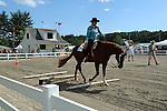 Horse and rider competing in horse show at Cheshire Fair in Swanzey, New Hampshire USA