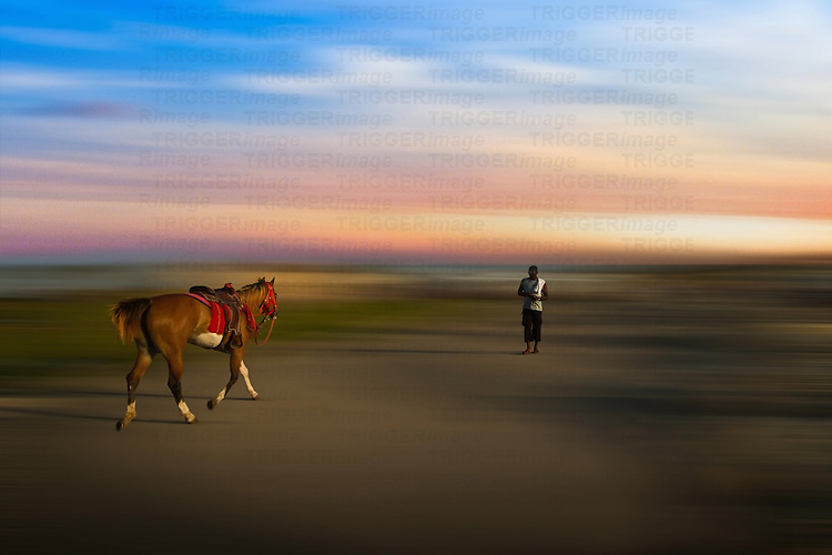 Conceptual beach scene with horse and male figure