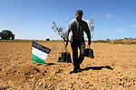 A Palestinian man plants olive trees to mark Land Day during a symbolic ceremony held in the village of Abassan, east of Khan Yunis near the border fence between Israel and the southern Gaza Strip on March 31, 2015. On the annual Land Day, demonstrations are held to remember six Arab Israeli protesters who were shot dead by Israeli police and troops during mass protests in 1976 against plans to confiscate Arab land in the Galilee. Photo by Abed Rahim Khatib