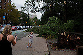 New York, New York<br /> September 16, 2010<br /> <br /> Park Slope after a severe storm and possible tornado. An uprooted tree on Prospect Park West and 3rd Avenue.