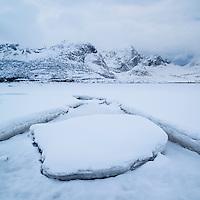 Snow covers sea ice in inner Flakstadpollen, Kilan, Flakstadøy, Lofoten Islands, Norway