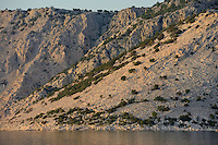 Adriatic coast, Velebit Nature Park, Rewilding Europe rewilding area, Velebit  mountains, Croatia