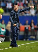 FUSSBALL   1. BUNDESLIGA   SAISON 2012/2013    32. SPIELTAG Hamburger SV - VfL Wolfsburg          05.05.2013 Trainer Thorsten Fink (Hamburger SV) engagiert an der Seitenlnie