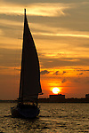 Sunset over Charleston South Carolina downtown waterfront Sailboat sailing