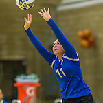 1 November 2015: Yeshiva University Maccabee Setter, Defensive Specialist, and team co-Captain Aliza Muller, a Senior from Los Angeles, CA, pushes one over against the Saint Joseph College Bears at SUNY Old Westbury in Old Westbury, NY. The Bears shut out the Maccabees 3-0 in NCAA women's volleyball, Skyline Conference play. Mandatory Credit: Ed Wolfstein Photo *** RAW (NEF) Image File Available ***