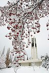 GCS Snow shots, Bell Tower, Marriott Center, MOA.January 6, 2005.Photography by Mark A. Philbrick