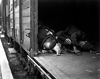 At the doorway of this railroad car may be seen the bodies of 3 political prisoners, shot as they tried to flee massacre at Seeshaupt.  All prisoners on train were killed by machine guns at the hands of SS troops.  Germany, May 1, 1945.  T4c. Albert Gretz.  (Army)<br /> NARA FILE #:  111-SC-205480<br /> WAR &amp; CONFLICT BOOK #:  1116