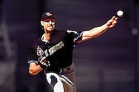 Randy Johnson, Arizona Diamondbacks