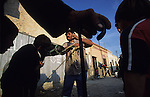 Pedro feeding beer to his pony. Pescadera barrio. Whilst some work as fishermen on commercial trawlers, most are unemployed and many are caught up in poverty, of which some are crack addicts. Almeria, Spain 2001