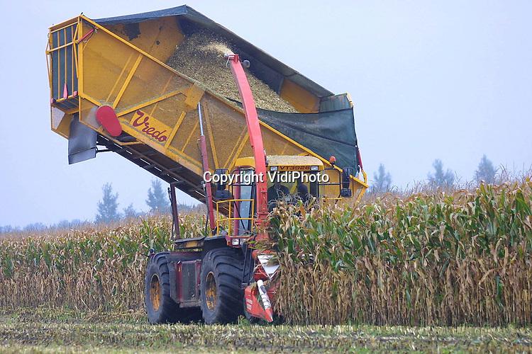 Foto: VidiPhoto..EDE - Vandaag een zelfrijdende bunker-hakselaar, morgen een mestwagen: het ei van Columbus. Op dit moment demonstreert mechanisatiebedrijf Vredo uit Dodewaard in Ede zijn nieuwe vinding: de multifunctionele landbouwmachine die voor allerlei landbouwdoeleinden gebruikt kan worden. Een van de voordelen is dat het voertuig ook in extreem natte omstandigheden het land op kan. Door de grote bunker op het voertuig hoeft er tijdens het maishakselen niet steeds een silagewagen naast te rijden. Bovendien kan de bunker in een halve minuut geleegd worden.