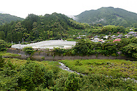 Greenhouses, Kamikatsu, Katsuura, Tokushima Prefecture, Japan, July 7, 2014. The Irodori Project is based in the mountain town of Kamikatsu, Tokushima Prefecture. Farmers - many of them elderly - grow leaves and flowers to use to decorate Japanese food in restaurants and hotels across the nation.