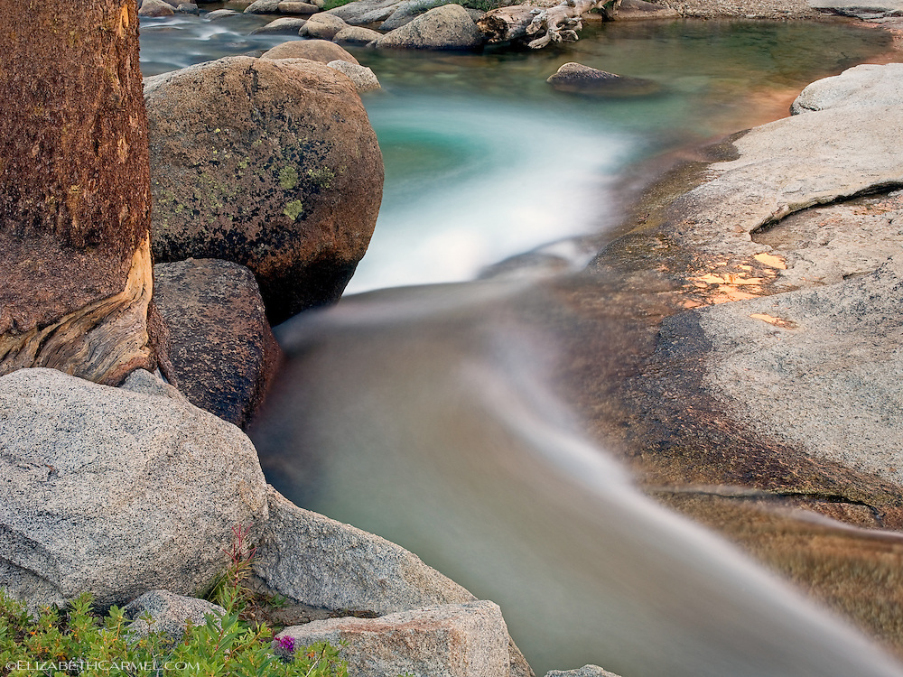 Tuolumne River in Spring
