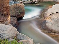 Tuolumne River in Spring