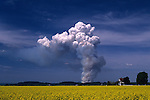 Huge fire with billowing smoke over field in Skagit County near Mount Vernon Washington State USA