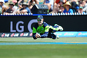 16.02.2015. Nelson, New Zealand.  George Dockrel of Ireland takes a catch during the 2015 ICC Cricket World Cup match between West Indies and Ireland. Saxton Oval, Nelson, New Zealand.