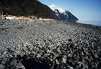 Partially cleaned oiled beach, one year after the Exxon Valdez oil spill, Point Helen, south Knight Island, Prince William Sound, Alaska compare with 1989 photo id#0s-1019