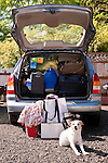Family on vacation with their automobile packed with suitcases, bags, blankets and a Jack Russell Terrier which can't fit into car Westport Washington State