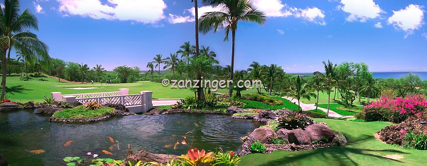 Maui Hawaii, Golf Course Lake, Koi, Palm Trees, Panorama, Golfing