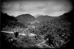 Death Throes of a Great Rainforest - Logging roads pierce forest, Sarawak (Borneo), Malaysia. - Logging roads pierce forest that was wilderness less than ten years ago, deep interior of Sarawak (Borneo), Malaysia.