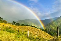 Monte Verde, Costa Rica, Central America.