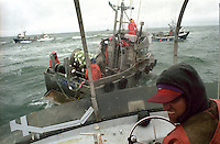 Skipper Martin Speak of the F/V Little Moose looks for a place to make a set on the North line Egegik River District in Bristol bay, Alaska on July 9, 1998.  Bristol Bay is home to the world's largest sockeye salmon fishery managed by the Alaska Department of Fish &amp; Game.  It is a sustainable fishery.  The commercial salmon drift gillnet fishing fleet is limited to boats no longer than 32 feet in length.  There were over 1,800 permanent entry permits listed in 2002 required by every boat.  Typically boats fish with two or three deckhands.  Peak of the season is around July 4th in this fishery which lasts about a month. The rivers also get a fair amount of chum, king, and chinook salmon.  Bristol Bay is located in the southwest part of Alaska.