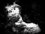 cozumel :: underwater (2015)