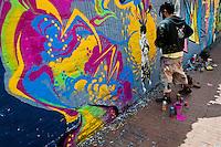 A Colombian street artist named Stinkfish sprays graffiti on the wall in La Candelaria, Bogota, 10 July 2010.