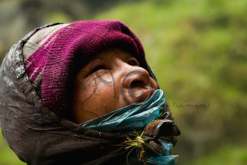 The men's improvised protection means that they pay a price for the harvest in the form of puffy faces and swollen lips…